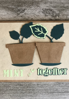 Mint to be together
